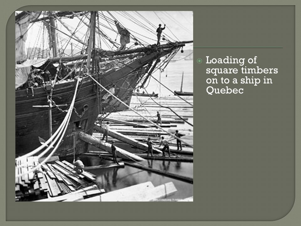  Loading of square timbers on to a ship in Quebec