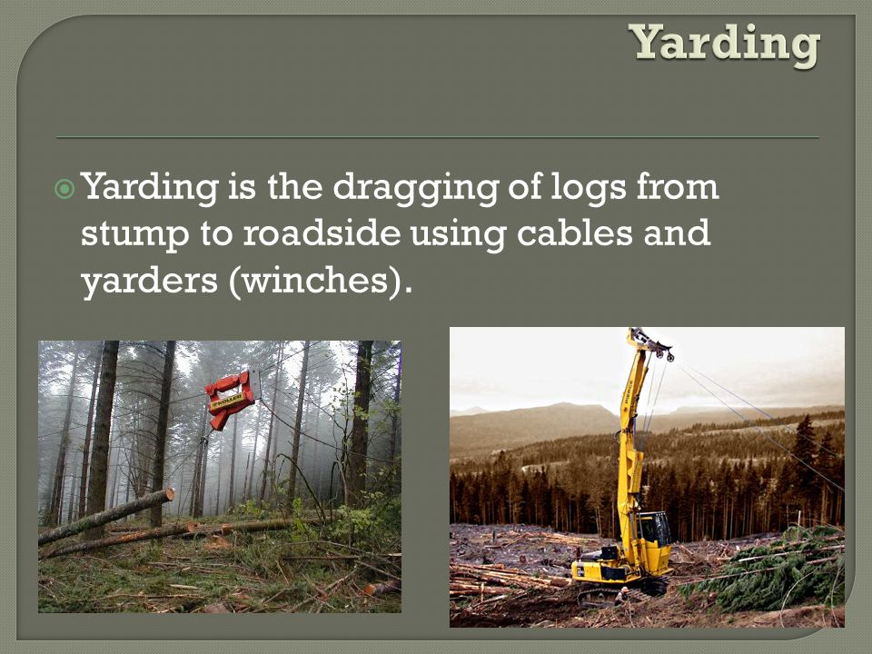  Yarding is the dragging of logs from stump to roadside using cables and yarders (winches).