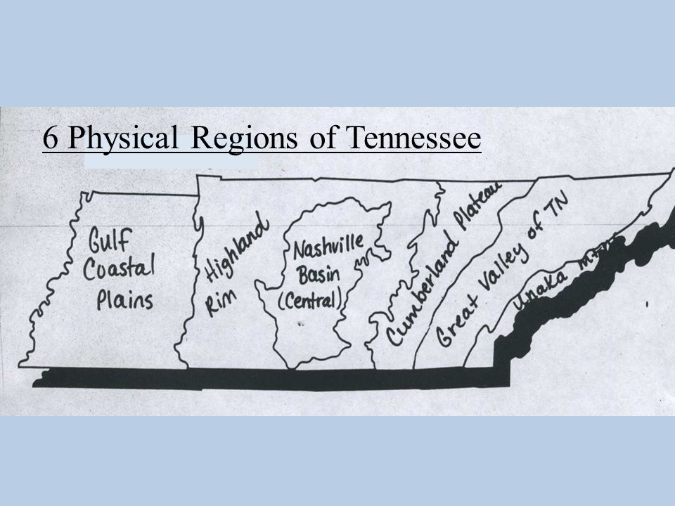 TN: MAJOR RIVER SYSTEMS MISSISSIPPI RIVER TENNESSEE RIVER CUMBERLAND RIVER TENNESSEE RIVER