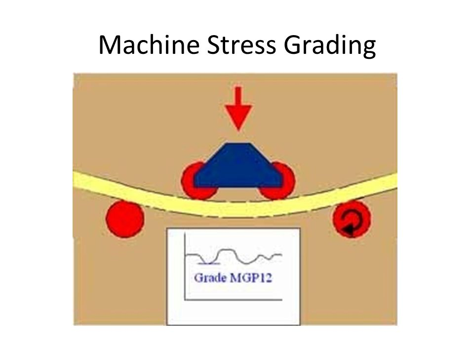Machine Stress Grading