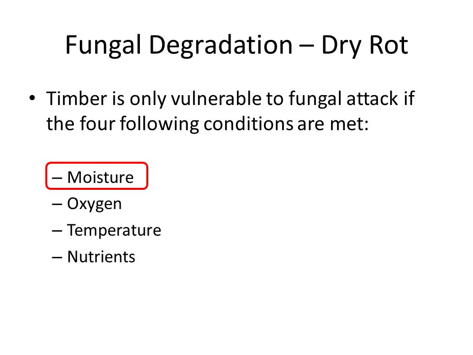 Fungal Degradation – Dry Rot Timber is only vulnerable to fungal attack if the four following conditions are met: – Moisture – Oxygen – Temperature – Nutrients