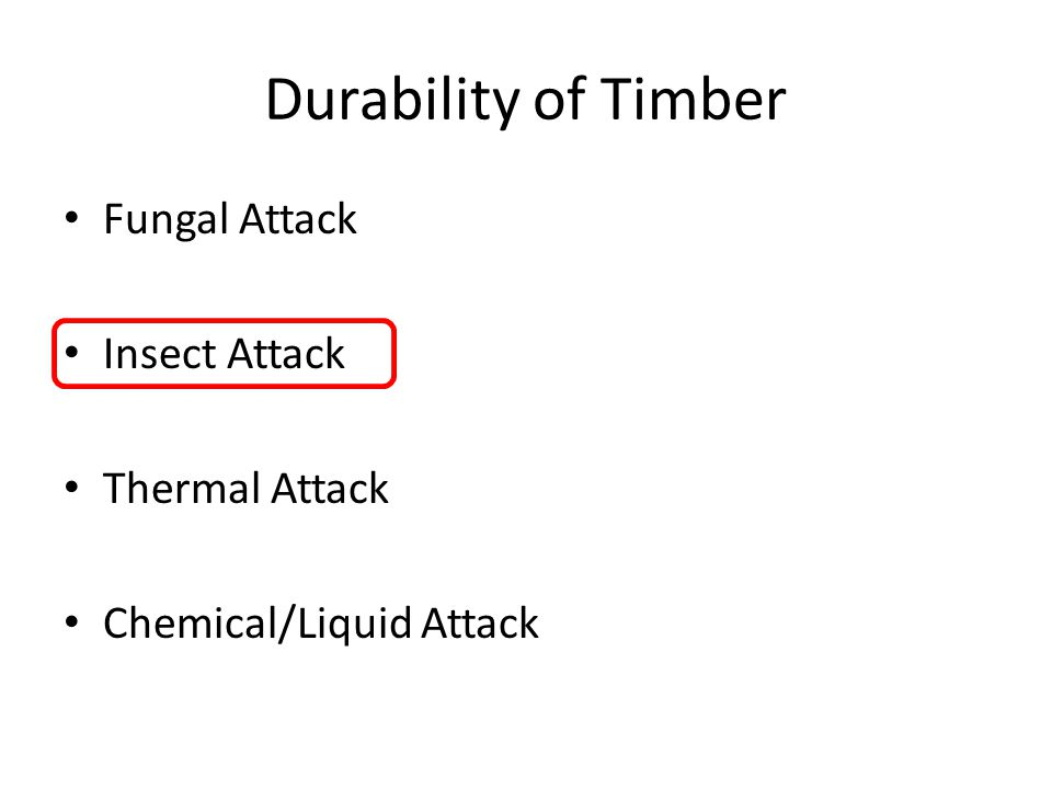 Durability of Timber Fungal Attack Insect Attack Thermal Attack Chemical/Liquid Attack