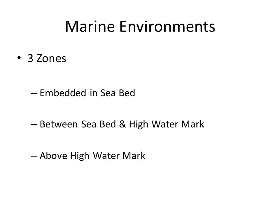 Marine Environments 3 Zones – Embedded in Sea Bed – Between Sea Bed & High Water Mark – Above High Water Mark