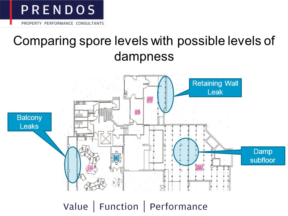 Comparing spore levels with possible levels of dampness Retaining Wall Leak Balcony Leaks Damp subfloor