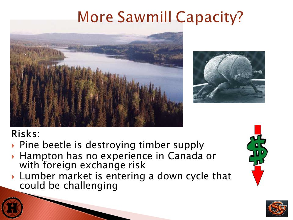 25 Risks:  Pine beetle is destroying timber supply  Hampton has no experience in Canada or with foreign exchange risk  Lumber market is entering a down cycle that could be challenging More Sawmill Capacity
