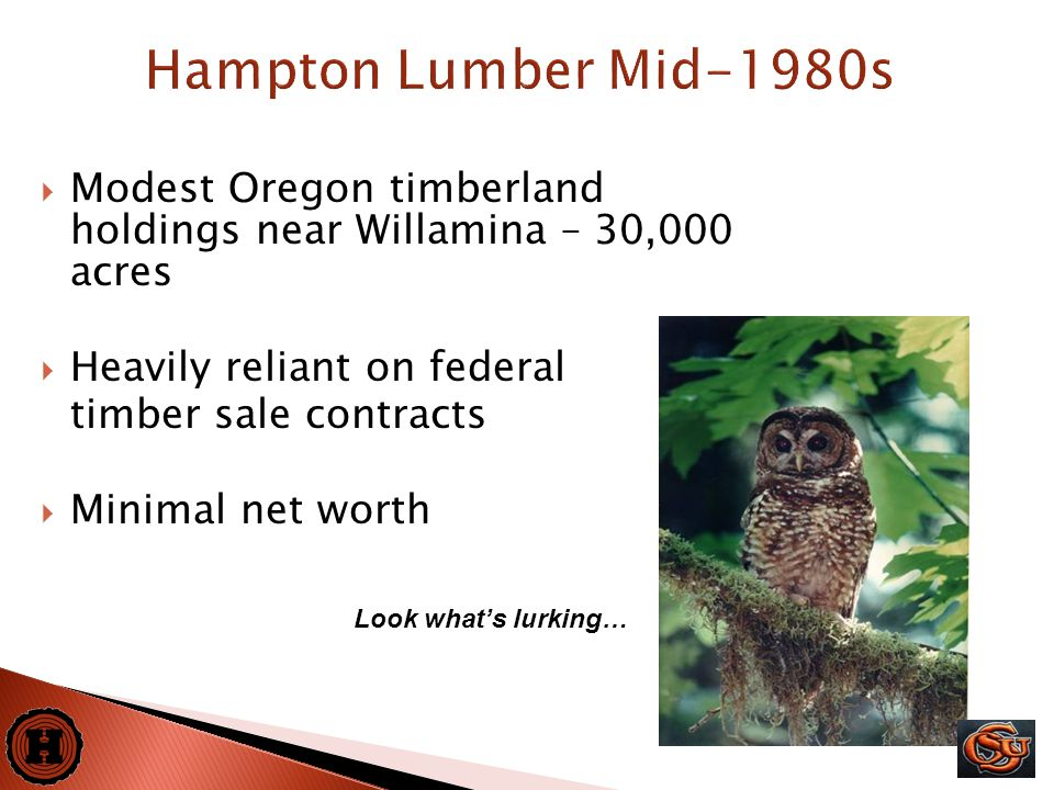 3  Modest Oregon timberland holdings near Willamina – 30,000 acres  Heavily reliant on federal timber sale contracts  Minimal net worth Look what's