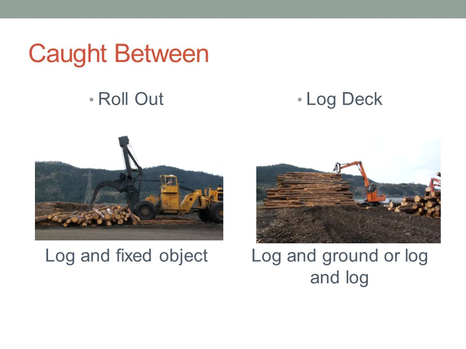 Caught Between Roll Out Log and fixed object Log Deck Log and ground or log and log