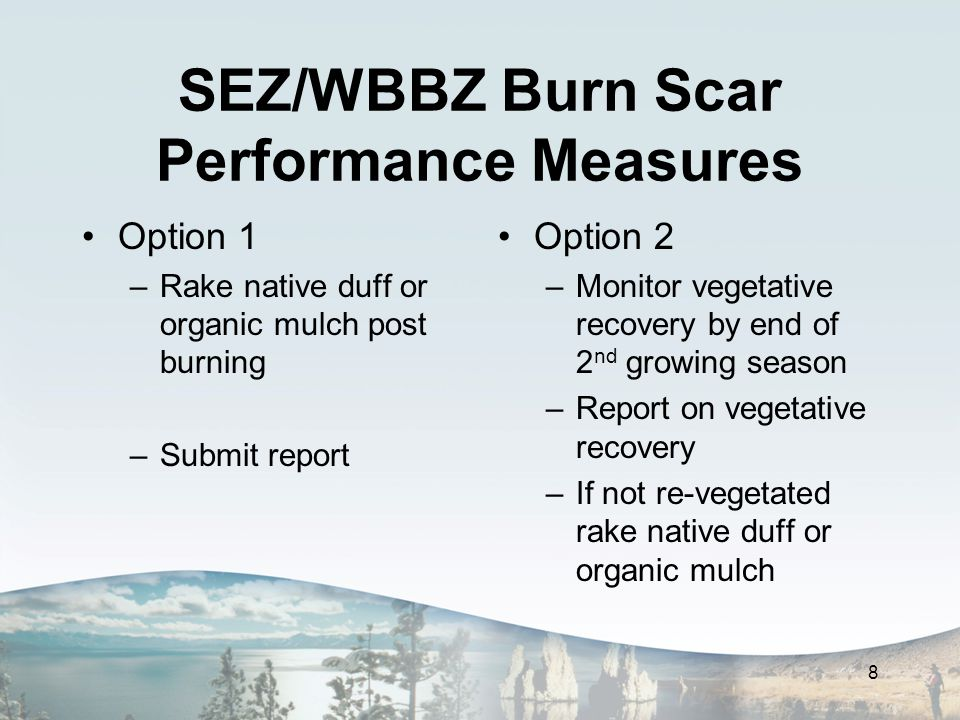 SEZ/WBBZ Burn Scar Performance Measures Option 1 –Rake native duff or organic mulch post burning –Submit report Option 2 –Monitor vegetative recovery by end of 2 nd growing season –Report on vegetative recovery –If not re-vegetated rake native duff or organic mulch 8