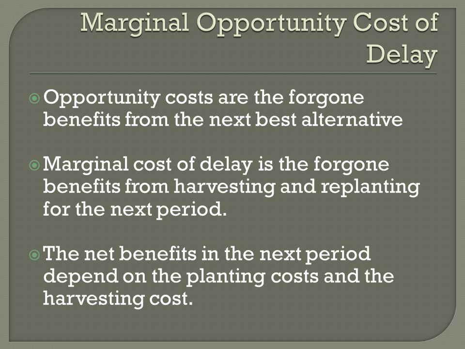  Opportunity costs are the forgone benefits from the next best alternative  Marginal cost of delay is the forgone benefits from harvesting and replanting for the next period.