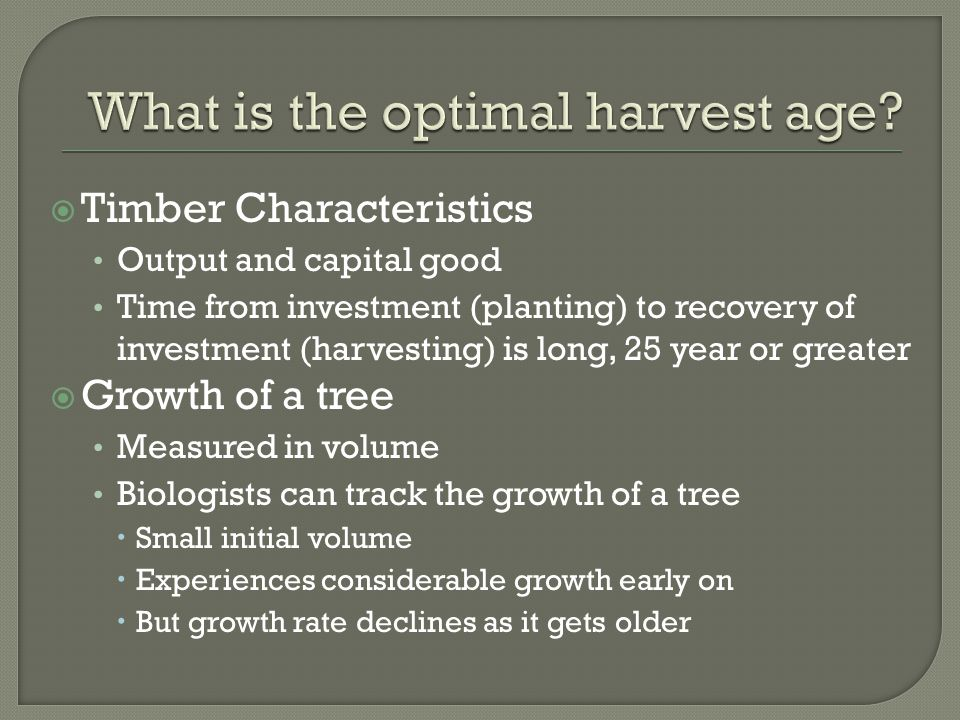  Timber Characteristics Output and capital good Time from investment (planting) to recovery of investment (harvesting) is long, 25 year or greater  Growth of a tree Measured in volume Biologists can track the growth of a tree  Small initial volume  Experiences considerable growth early on  But growth rate declines as it gets older