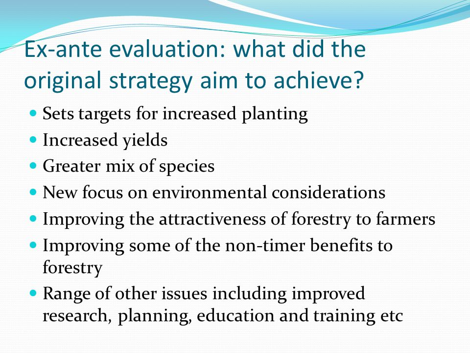 Ex-ante evaluation: what did the original strategy aim to achieve.