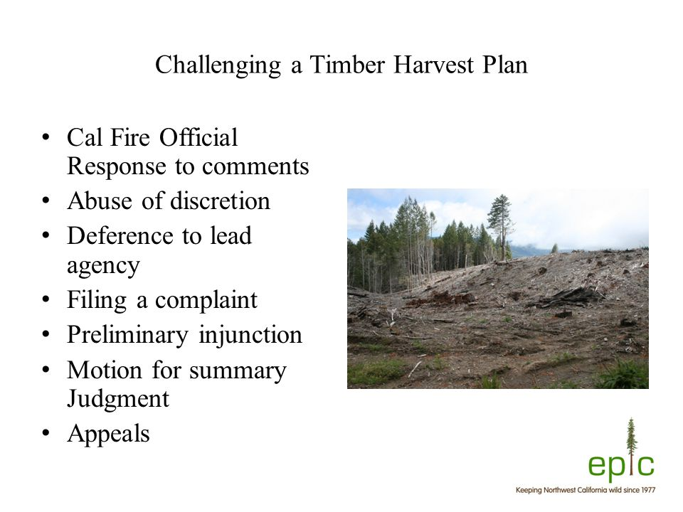Challenging a Timber Harvest Plan Cal Fire Official Response to comments Abuse of discretion Deference to lead agency Filing a complaint Preliminary injunction Motion for summary Judgment Appeals