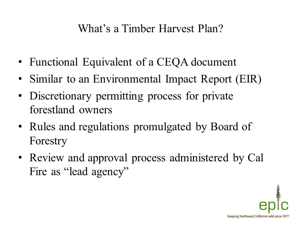 What's a Timber Harvest Plan.