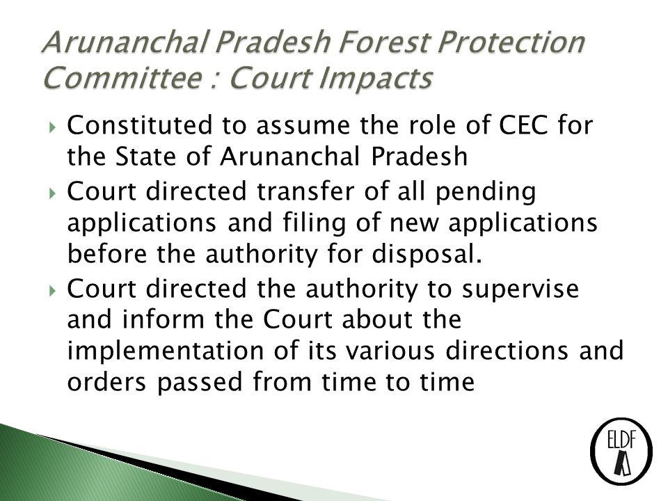  Constituted to assume the role of CEC for the State of Arunanchal Pradesh  Court directed transfer of all pending applications and filing of new applications before the authority for disposal.