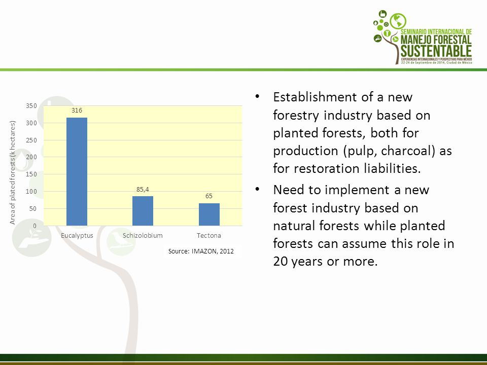 Establishment of a new forestry industry based on planted forests, both for production (pulp, charcoal) as for restoration liabilities.