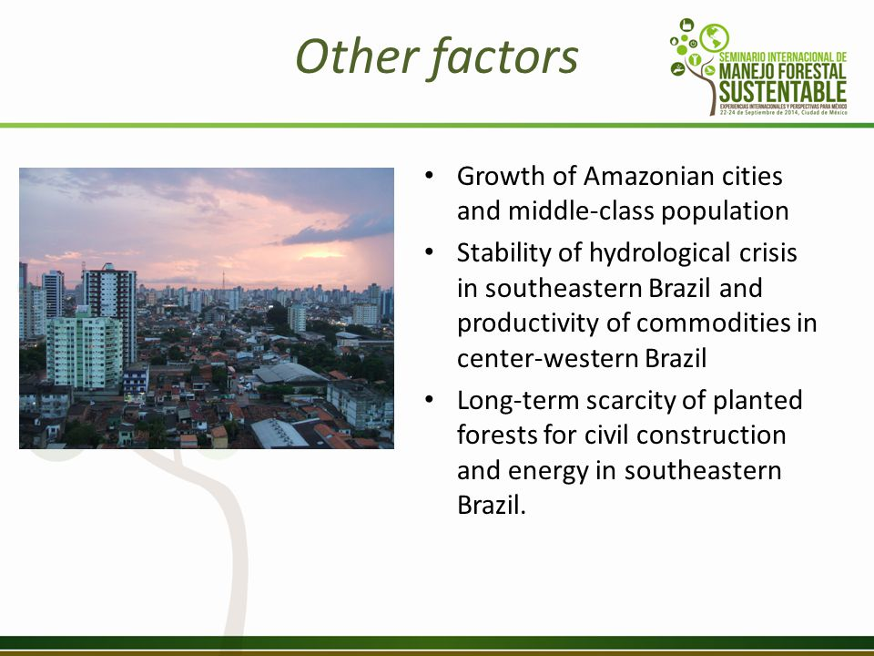 Other factors Growth of Amazonian cities and middle-class population Stability of hydrological crisis in southeastern Brazil and productivity of commodities in center-western Brazil Long-term scarcity of planted forests for civil construction and energy in southeastern Brazil.