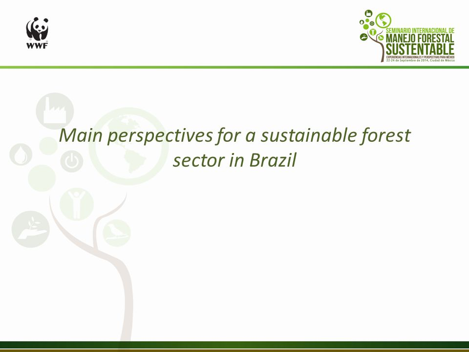 Main perspectives for a sustainable forest sector in Brazil