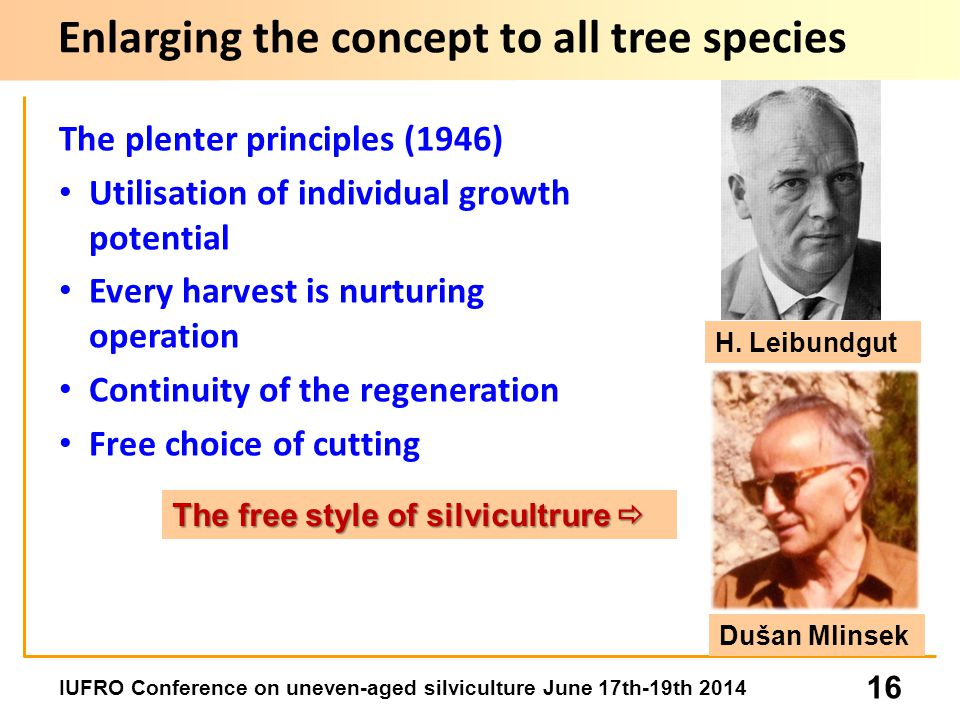IUFRO Conference on uneven-aged silviculture June 17th-19th 2014 16 The plenter principles (1946) Utilisation of individual growth potential Every harvest is nurturing operation Continuity of the regeneration Free choice of cutting Enlarging the concept to all tree species H.