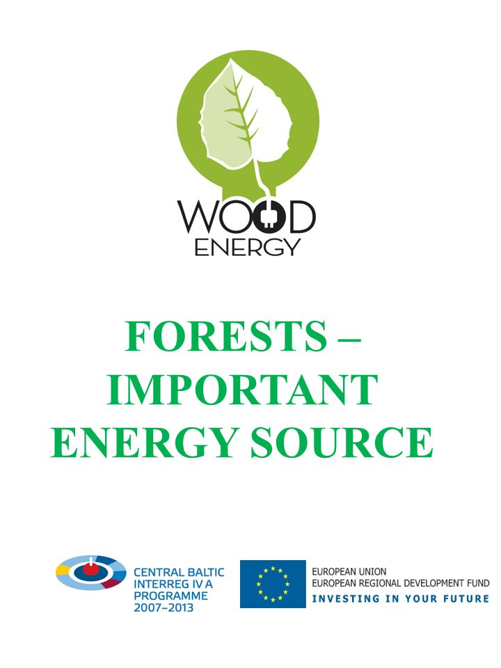 Forests in the EU Apart from their importance for ecology and environment conservation forests are one of the Europe s major renewable resources which provide multiple benefits to the society and economy.