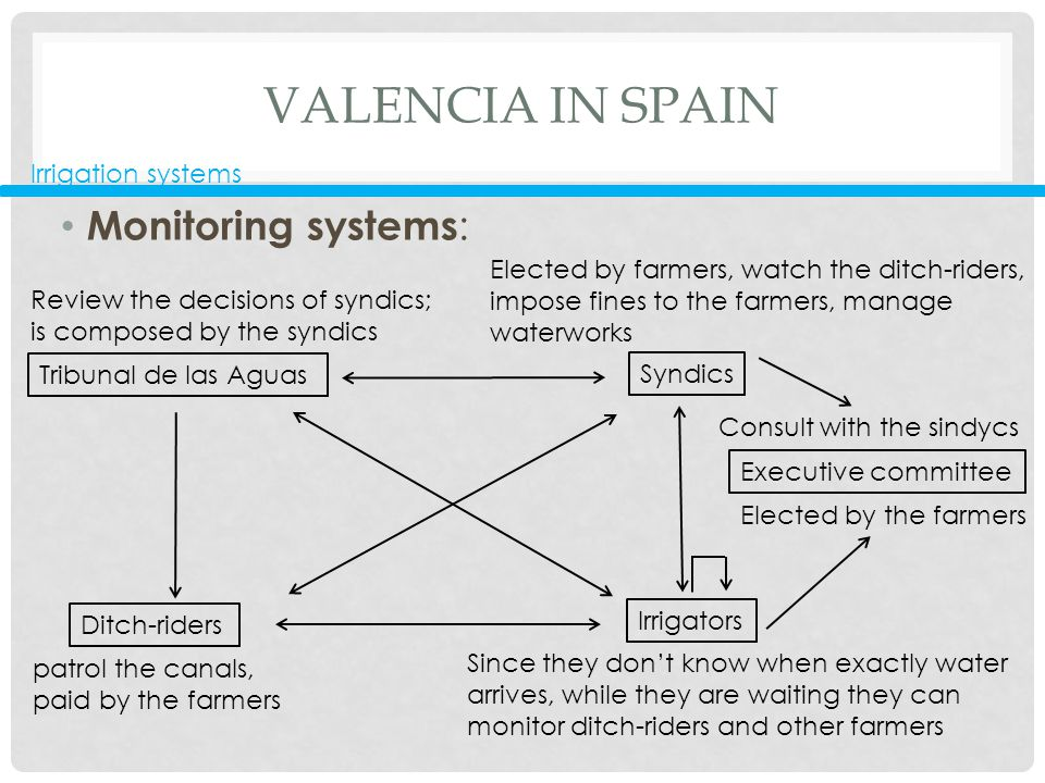 VALENCIA IN SPAIN Monitoring systems : Irrigation systems Tribunal de las Aguas Ditch-riders Irrigators Syndics Executive committee Since they don't know when exactly water arrives, while they are waiting they can monitor ditch-riders and other farmers patrol the canals, paid by the farmers Elected by farmers, watch the ditch-riders, impose fines to the farmers, manage waterworks Elected by the farmers Review the decisions of syndics; is composed by the syndics Consult with the sindycs