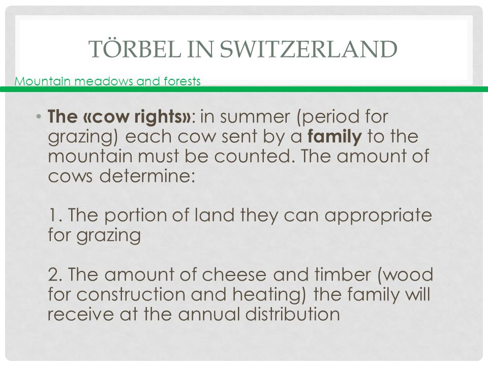 TÖRBEL IN SWITZERLAND The «cow rights» : in summer (period for grazing) each cow sent by a family to the mountain must be counted.