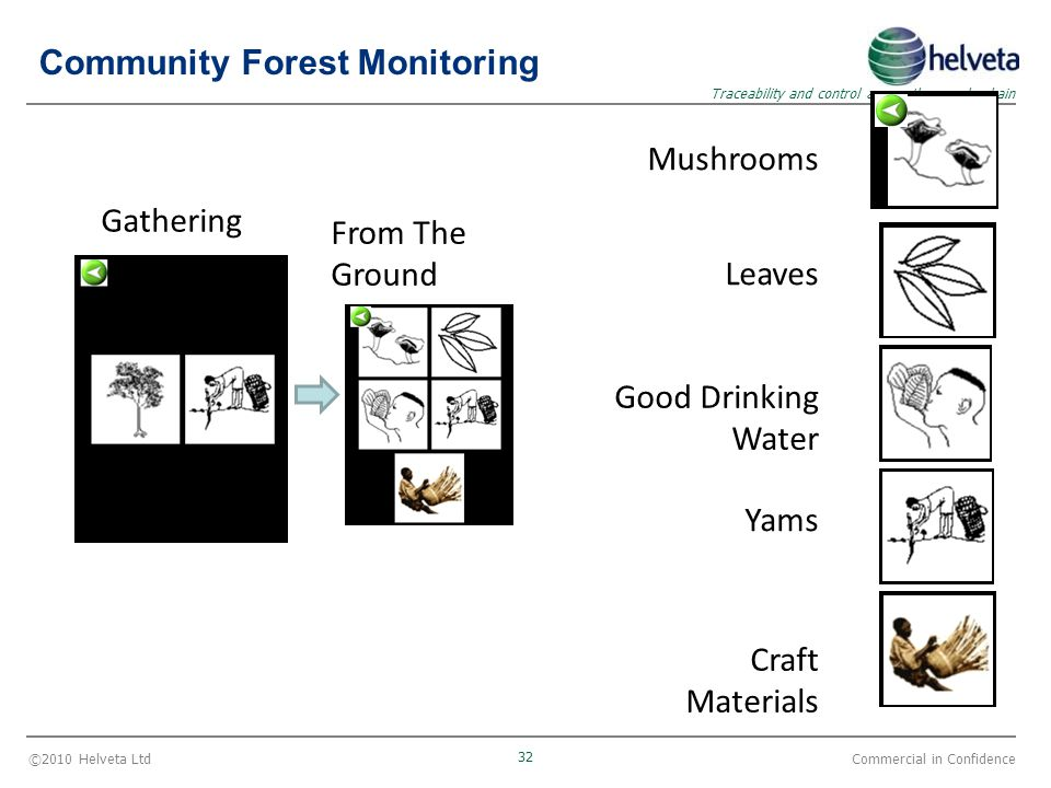 ©2010 Helveta Ltd 32 Traceability and control across the supply chain Commercial in Confidence Gathering From The Ground Mushrooms Leaves Good Drinkin