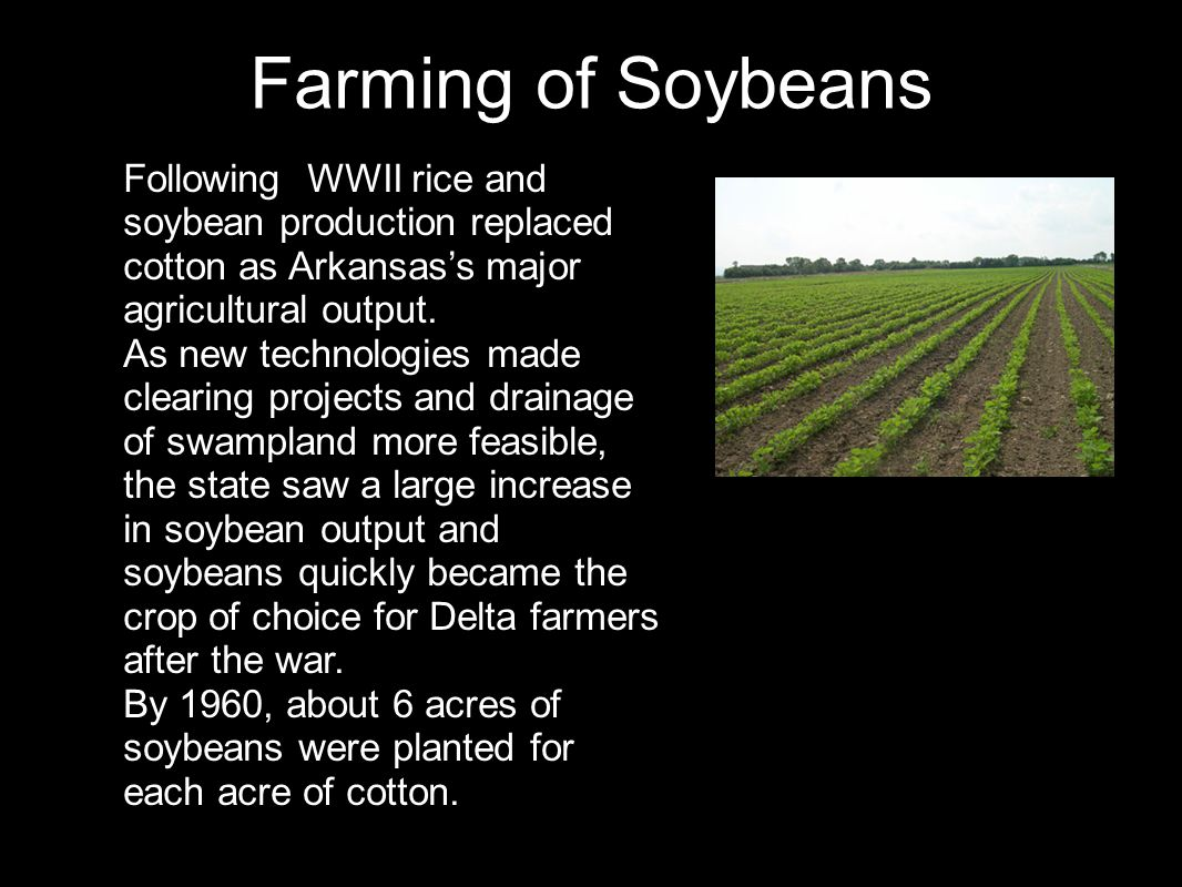 Farming of Soybeans Following WWII rice and soybean production replaced cotton as Arkansas's major agricultural output.