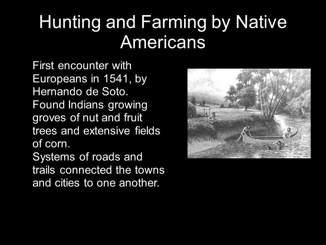 Hunting and Farming by Native Americans First encounter with Europeans in 1541, by Hernando de Soto. Found Indians growing groves of nut and fruit tre