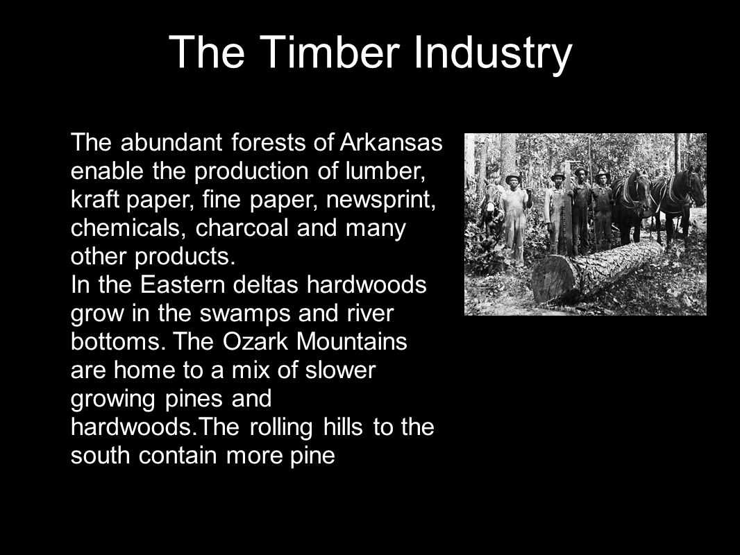 The Timber Industry The abundant forests of Arkansas enable the production of lumber, kraft paper, fine paper, newsprint, chemicals, charcoal and many other products.