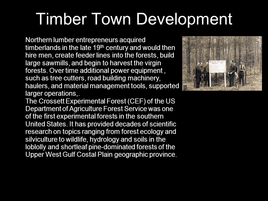 Timber Town Development Northern lumber entrepreneurs acquired timberlands in the late 19 th century and would then hire men, create feeder lines into the forests, build large sawmills, and begin to harvest the virgin forests.