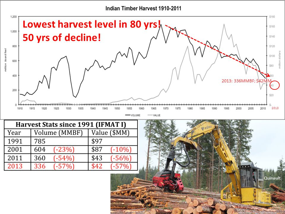 Quinault 2013 2013: 336MMBF; $42MM Lowest harvest level in 80 yrs! 50 yrs of decline!