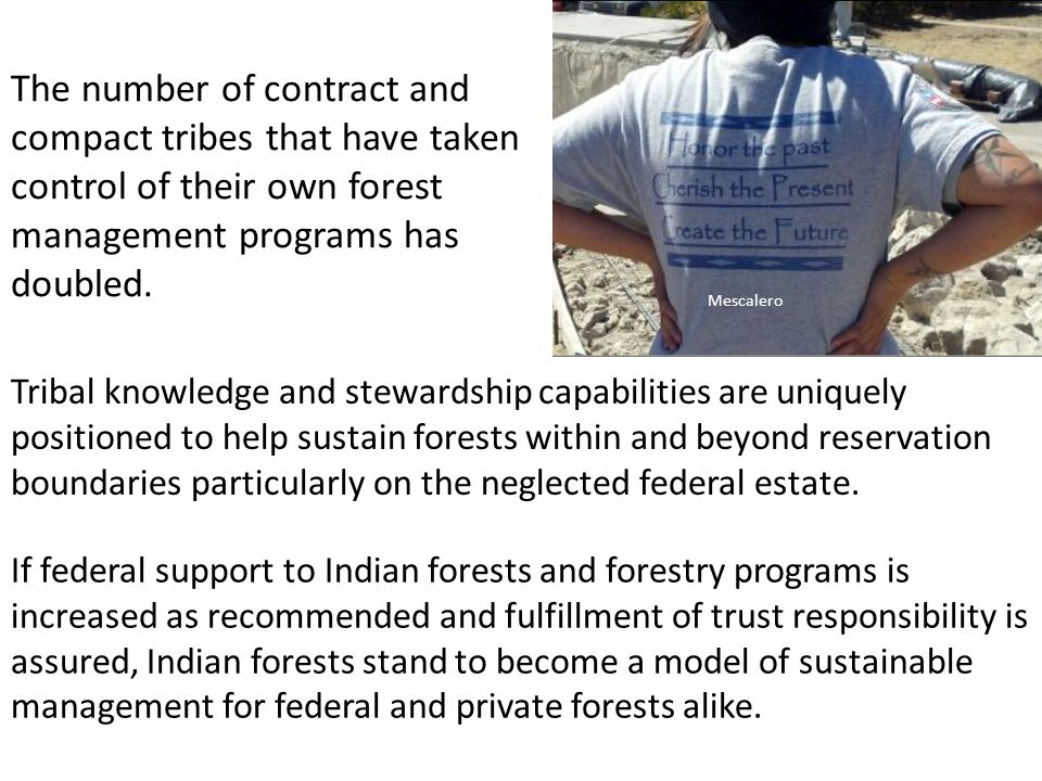 The number of contract and compact tribes that have taken control of their own forest management programs has doubled.