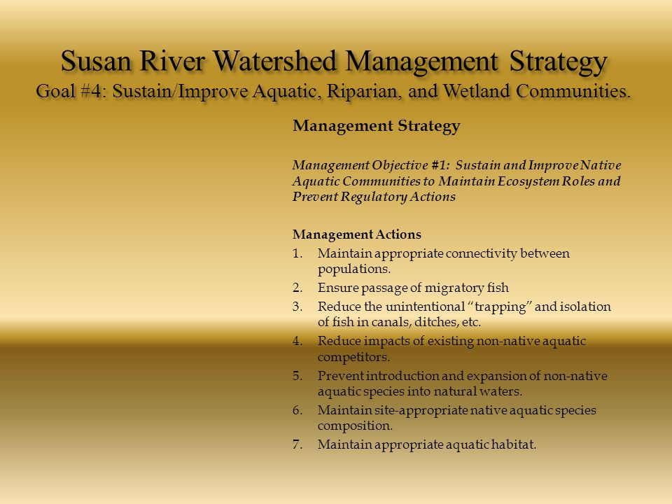 Susan River Watershed Management Strategy Goal #4: Sustain/Improve Aquatic, Riparian, and Wetland Communities. Management Strategy Management Objectiv