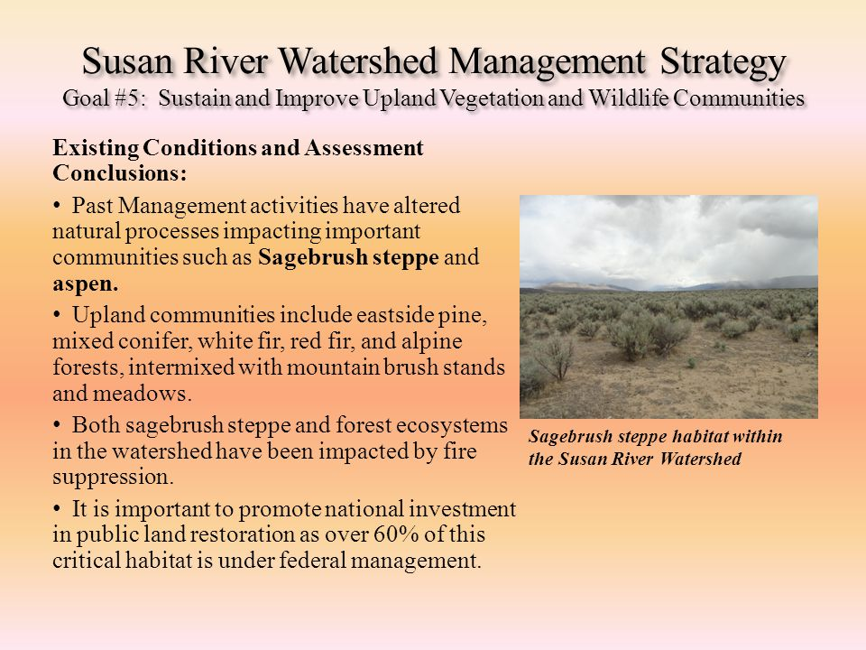 Susan River Watershed Management Strategy Goal #5: Sustain and Improve Upland Vegetation and Wildlife Communities Existing Conditions and Assessment C