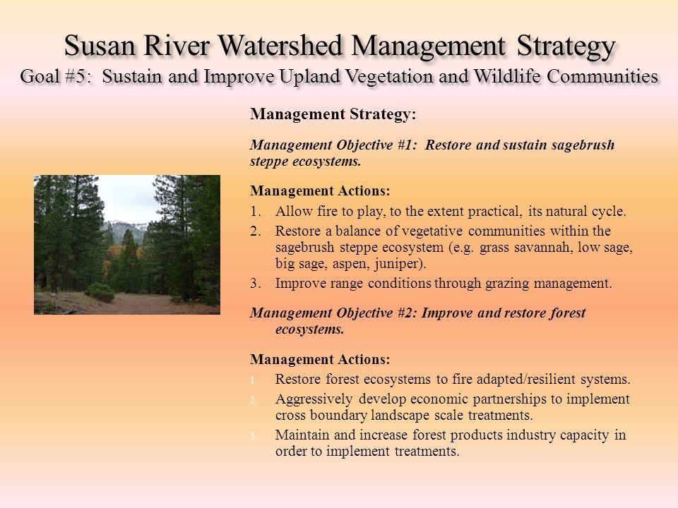 Susan River Watershed Management Strategy Goal #5: Sustain and Improve Upland Vegetation and Wildlife Communities Management Strategy: Management Obje