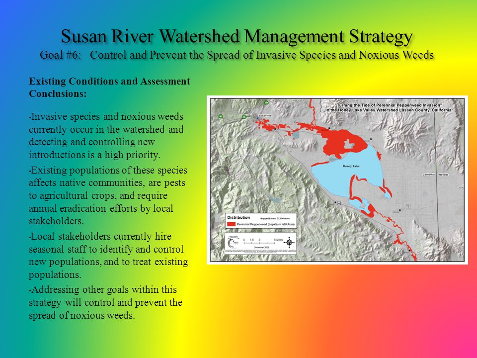 Susan River Watershed Management Strategy Goal #6: Control and Prevent the Spread of Invasive Species and Noxious Weeds Existing Conditions and Assess