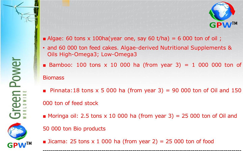 ■ Algae: 60 tons x 100ha(year one, say 60 t/ha) = 6 000 ton of oil ; and 60 000 ton feed cakes.