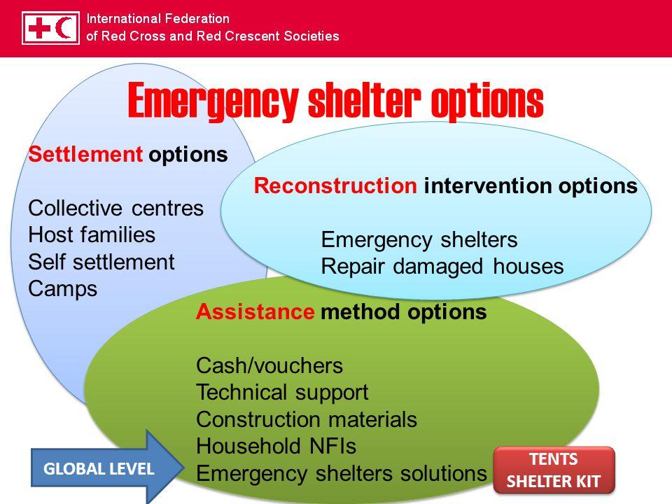 Emergency shelter options Settlement options Collective centres Host families Self settlement Camps Assistance method options Cash/vouchers Technical