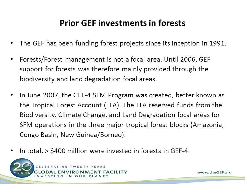 Prior GEF investments in forests The GEF has been funding forest projects since its inception in 1991. Forests/Forest management is not a focal area.
