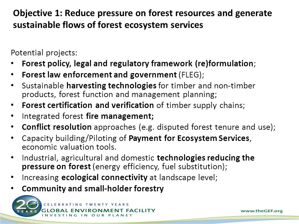 Objective 1: Reduce pressure on forest resources and generate sustainable flows of forest ecosystem services Potential projects: Forest policy, legal and regulatory framework (re)formulation; Forest law enforcement and government (FLEG); Sustainable harvesting technologies for timber and non-timber products, forest function and management planning; Forest certification and verification of timber supply chains; Integrated forest fire management; Conflict resolution approaches (e.g.