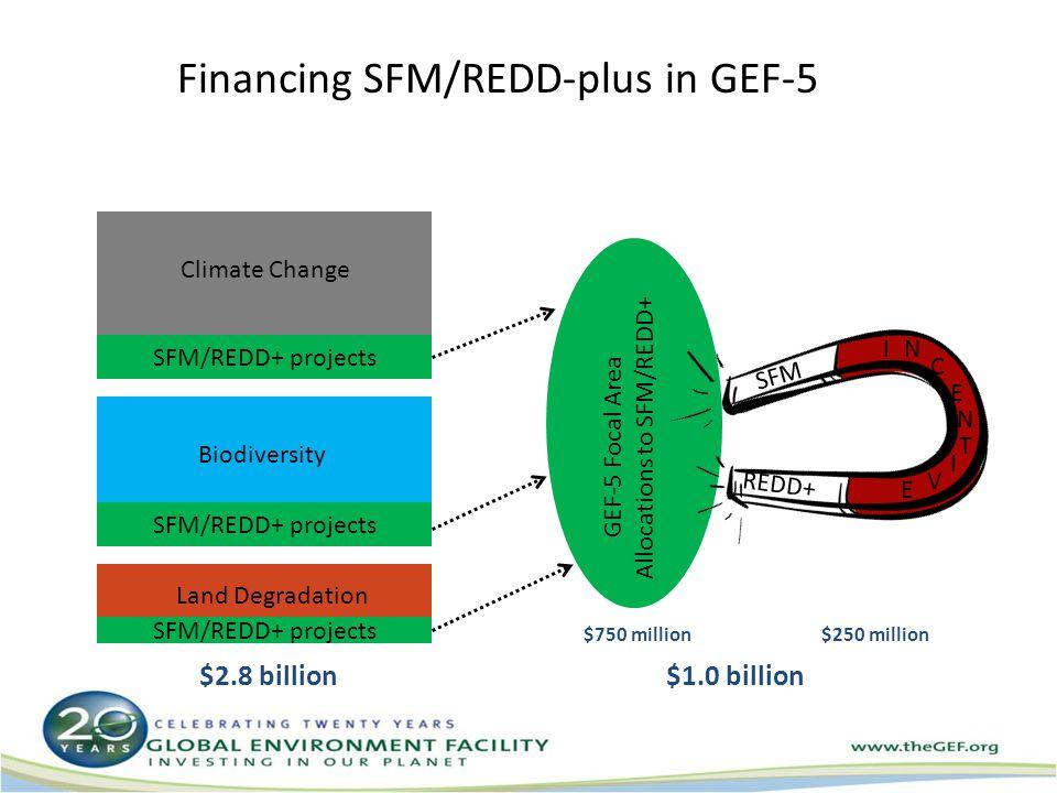 Financing SFM/REDD-plus in GEF-5 SFM/REDD+ projects Climate Change Biodiversity Land Degradation GEF-5 Focal Area Allocations to SFM/REDD+ SFM REDD+ IN C E N I T V E $250 million$750 million $2.8 billion $1 billion in total for SFM/REDD+ $1.0 billion