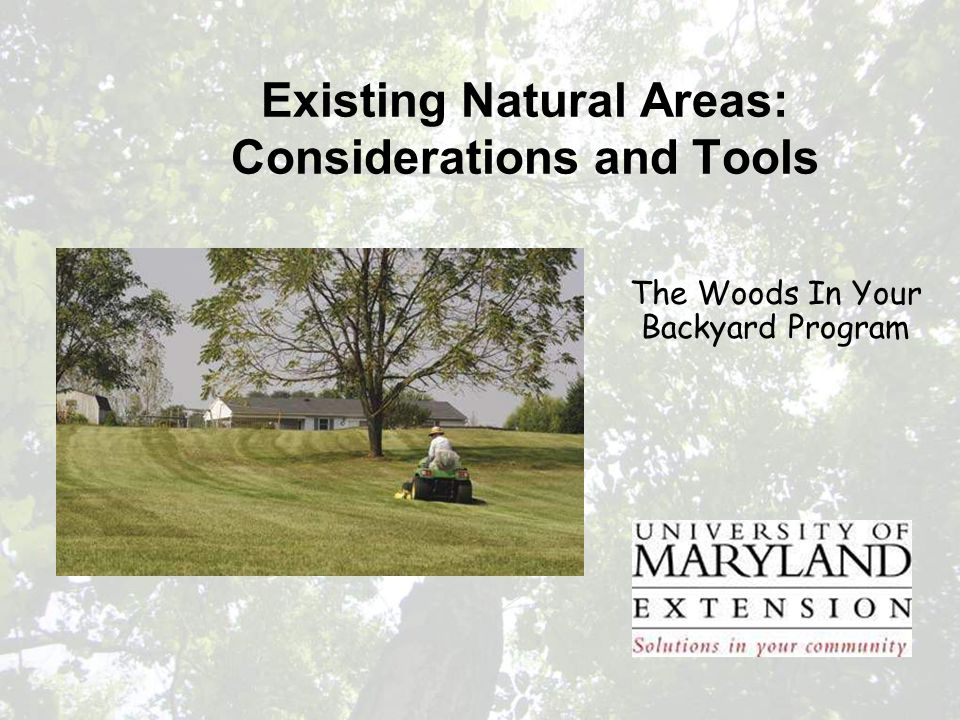 Existing Natural Areas: Considerations and Tools The Woods In Your Backyard Program