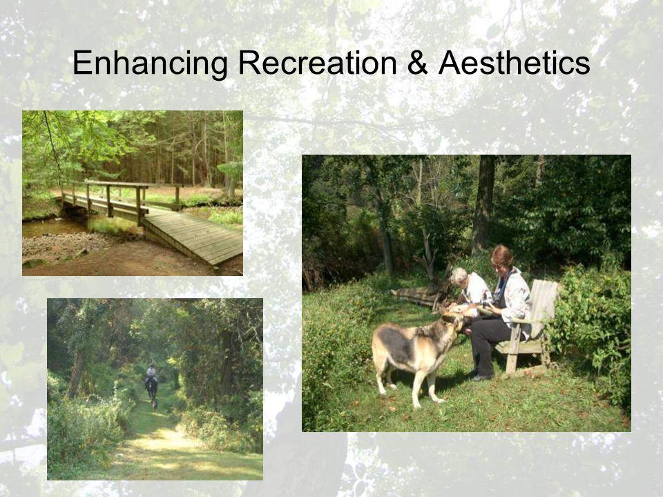 Enhancing Recreation & Aesthetics