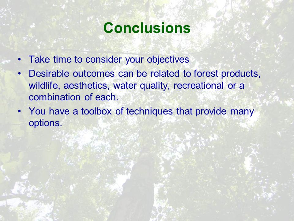 Conclusions Take time to consider your objectives Desirable outcomes can be related to forest products, wildlife, aesthetics, water quality, recreational or a combination of each.