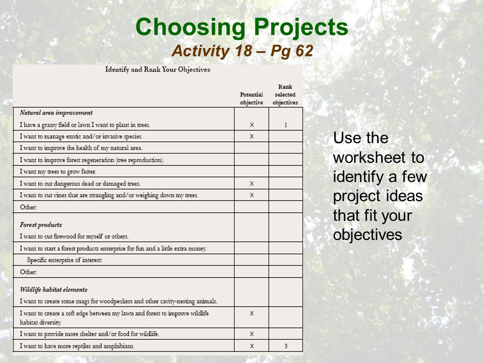 Choosing Projects Activity 18 – Pg 62 Use the worksheet to identify a few project ideas that fit your objectives