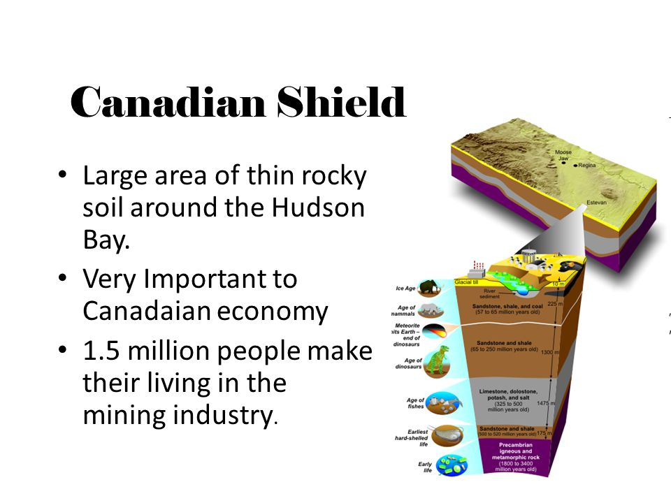 Canadian Shield Large area of thin rocky soil around the Hudson Bay. Very Important to Canadaian economy 1.5 million people make their living in the m