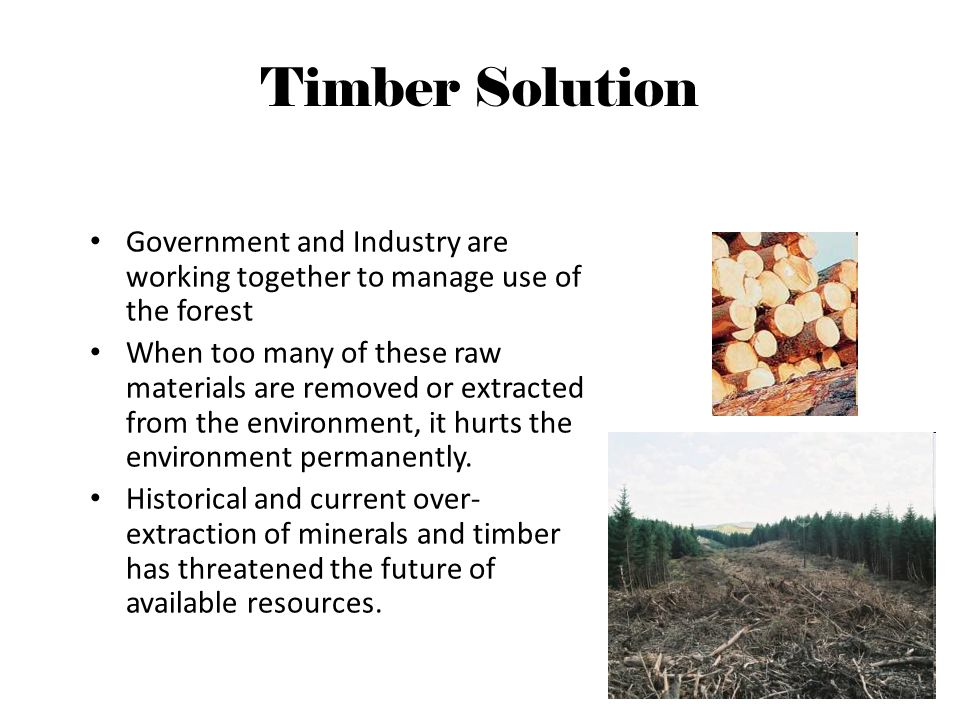 Timber Solution Government and Industry are working together to manage use of the forest When too many of these raw materials are removed or extracted from the environment, it hurts the environment permanently.