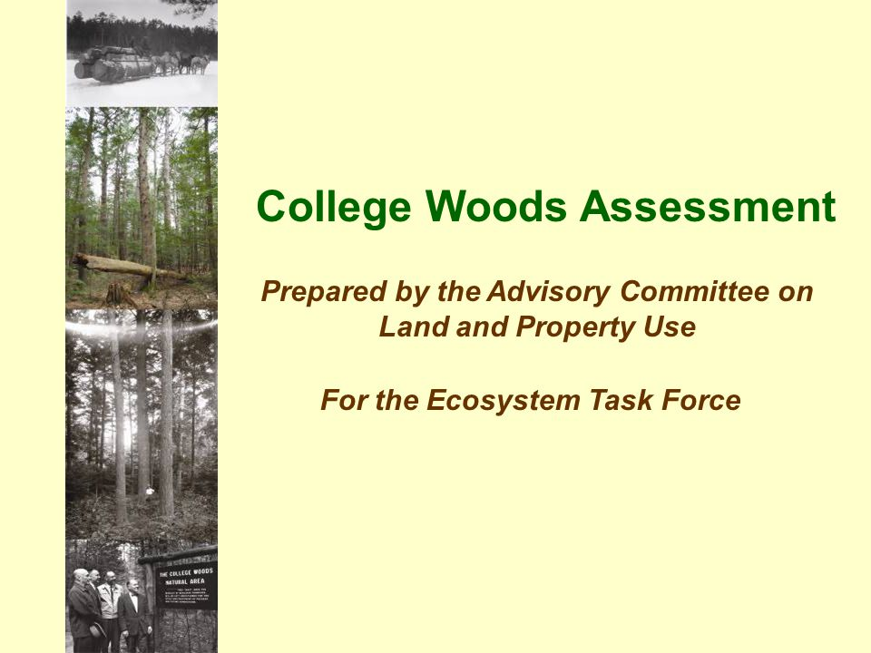 College Woods Assessment Prepared by the Advisory Committee on Land and Property Use For the Ecosystem Task Force