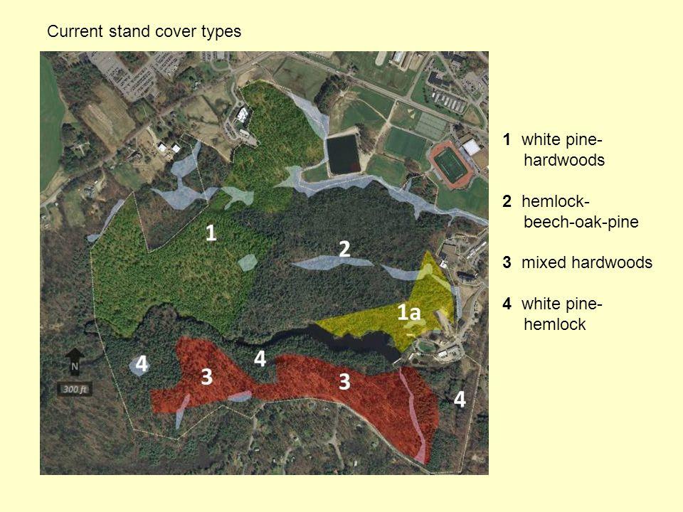 Current stand cover types 1 white pine- hardwoods 2 hemlock- beech-oak-pine 3 mixed hardwoods 4 white pine- hemlock