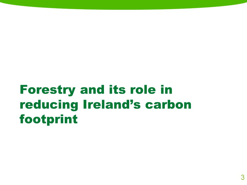 Forestry and its role in reducing Ireland's carbon footprint 3
